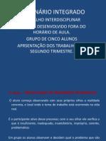 SEMINÁRIO INTEGRADO