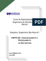 Apostila Engenharia Gas Natural I_Parte III_UNP