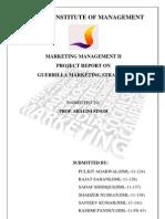 Guirrella Marketing Project