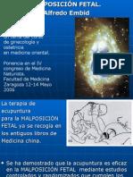 Dias Positivas Ginecolgia Posicion Fetal