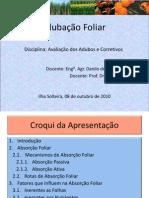 12-Adubação FoliarDanilo