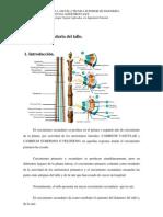Prácticas de Laboratorio nº 9 y nº 10