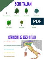 Boschi italiani