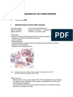 Diseases of Cultured Prawns