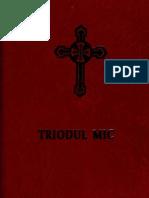 Triodul Mic