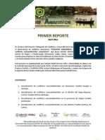 Reporte 1 Vigilante Amazonico