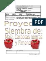 49830173 Proyecto de Siembra de Maiz