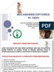 """Presentación plenaria """"Mecanorreceptores:El oído"""""""