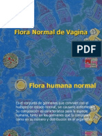 Flora Normal Vagina- S. Jauregui