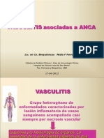 Teorico_Vasculitis