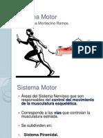 Sistema Motor