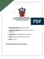 Actividad Integradora Plan de Negocios