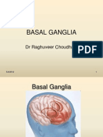 Basal Ganglia Physiological aspects