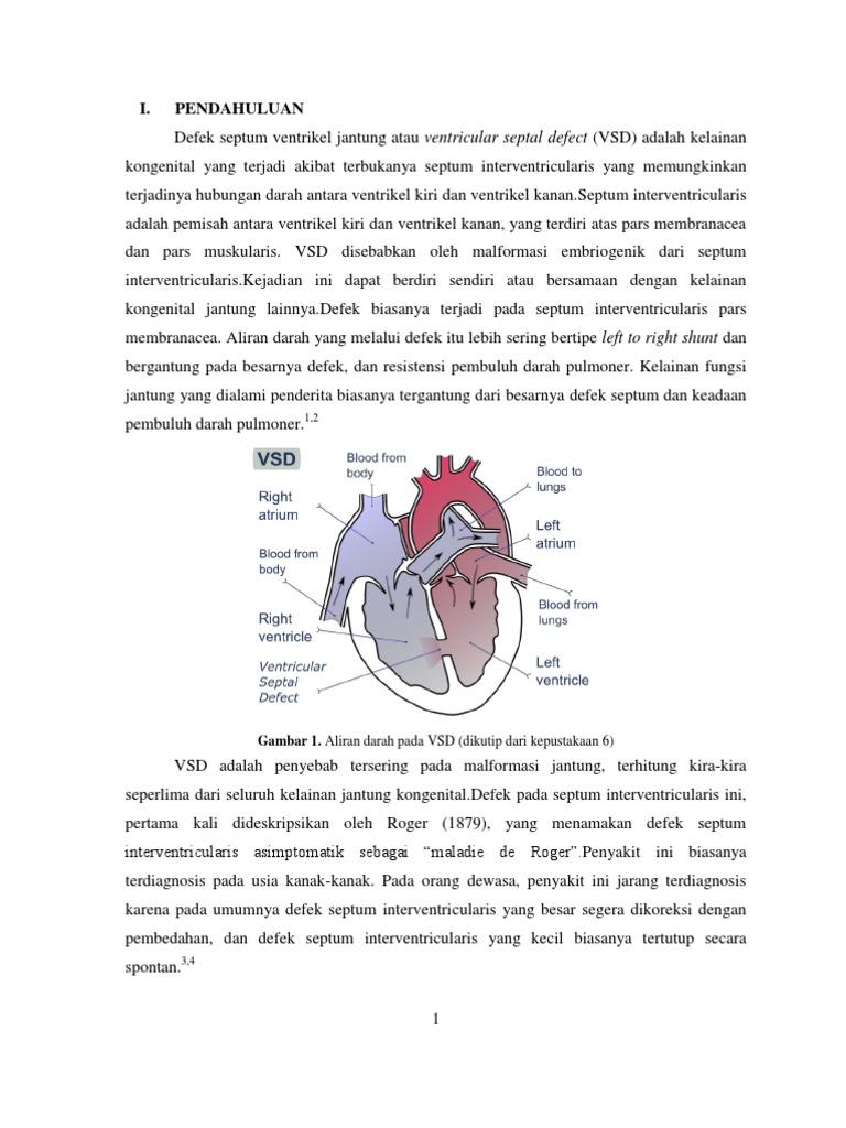 referat radiologi (ventricular septal defect)