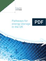 Pathways for Energy Storage