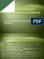 Expo Cad. Respiratoria