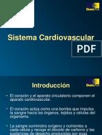 11. Sistema Cardiovascular