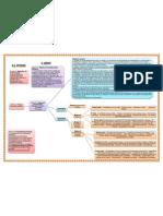 esquema legislacion primaria