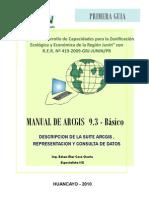 Manual Arcgis1.PDF.pdf