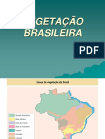 Vegetacao brasileira