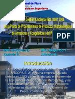 EXPOSICIÓ TESIS QUINAL 1 - copia