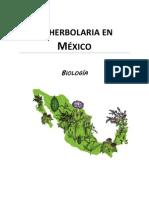 La herbolaria en México1