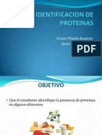IDENTIFICACION DE PROTEINAS