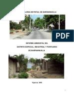 Informe_Ambiental_2009