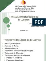Tratamento Biológico de Efluentes
