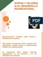 Principios y Valores Para El Desarrollo Organizacional