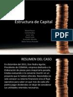 Resumen Estructura Capital