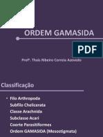 Gamasida e Oribatida Teorica