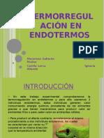 Termorregulación en endotermos