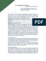 Augusto Perez Guarnieri - La Planificacion y El Emergente Del Grupo