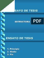 EL_ENSAYO_DE_TESIS[1]