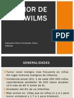Presentacion de Tumor de Wilms FINAL