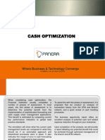 FANERA LTD Cash Optimization