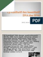 Uji Kualitatif Dan Kuantitatif DNA Dan RNA 2010