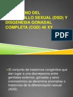 46_xy_presentacion