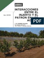 Interacciones Entre El Injerto y El Patron en Los Agrios