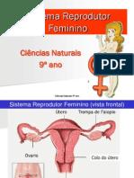 9.Ppt.prof.4.Sreprodutorfeminino