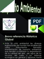 23063767-Impacto-Ambiental-PRESENTACION