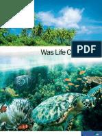 Was Life Created ?