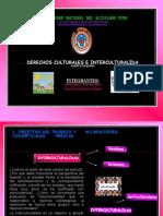 Derechos Culturales e Intercultural Id Ad