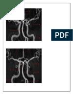 Imagen Arterias y Venas
