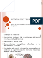 METABOLISMO Y REGULACION