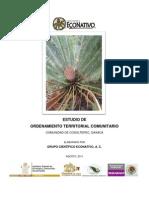 Estudio_OTC_Cosoltepec_2011[1]