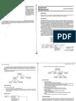 Resumen Patron Composite