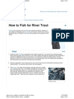 River Trout Fishing