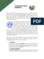 10. Waspadai Bakteri Pada Makanan Versi Anak